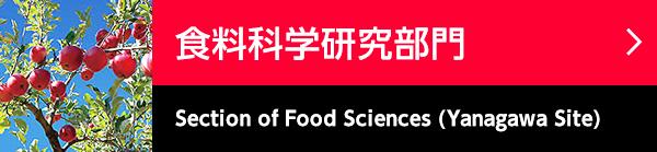 食料科学研究部門